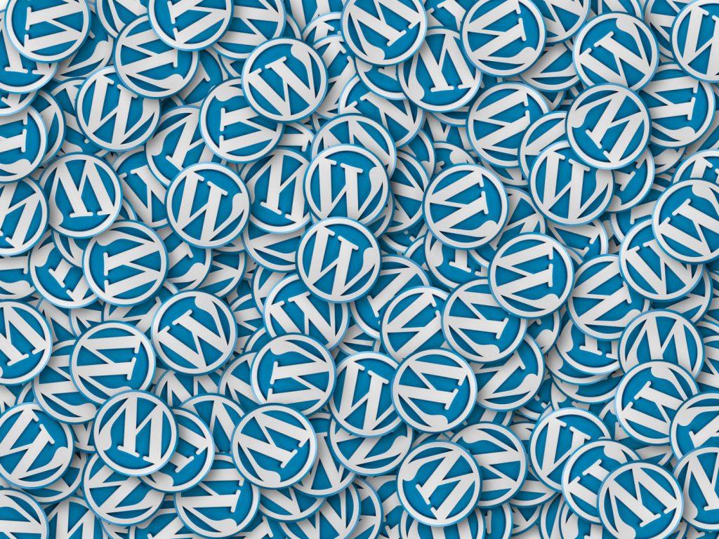 Specjalista WordPress Lublin-Sebastian Skórski